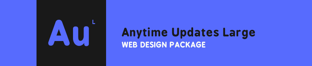 Anytime Updates Large Web Design Package